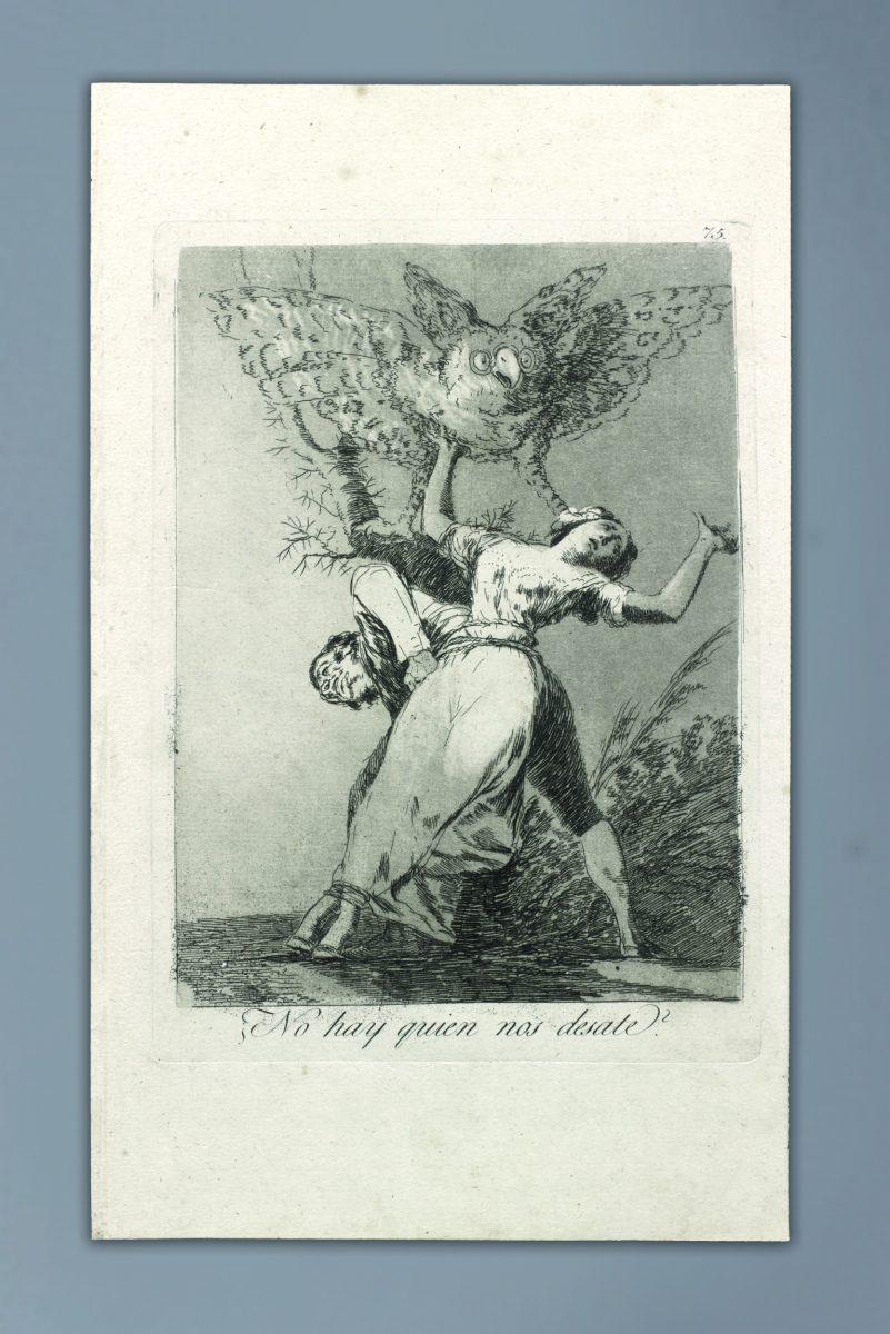 Francisco Goya, Nop hay…